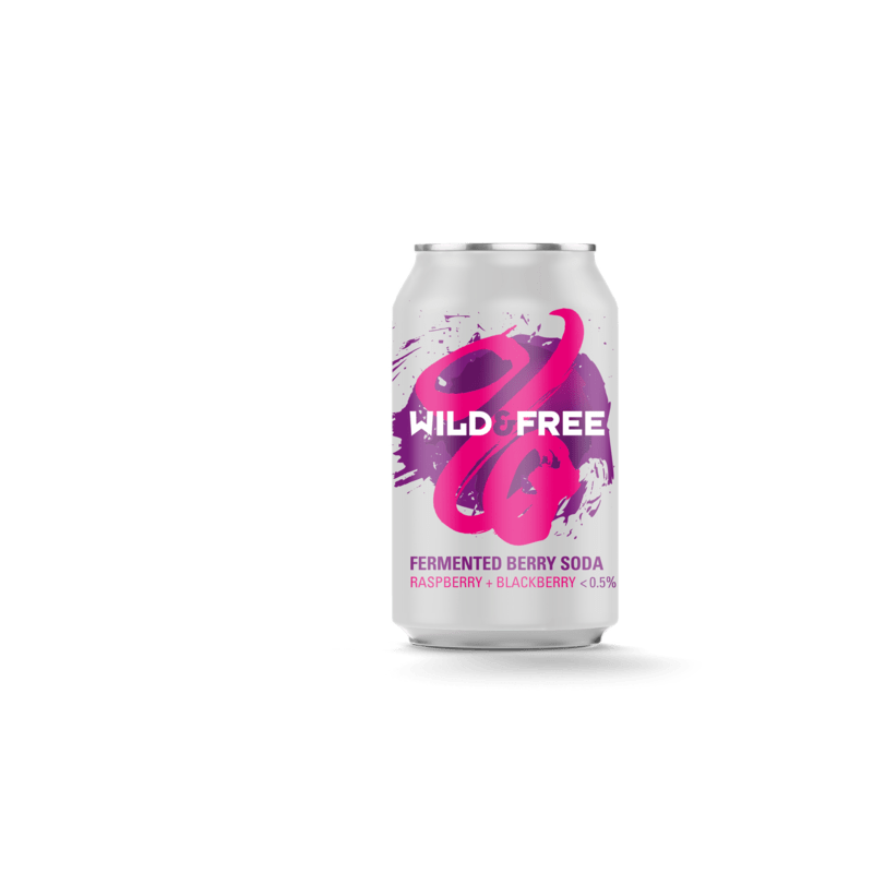 Wild Beer Co Fermented Berry Soda (0.5% ABV)
