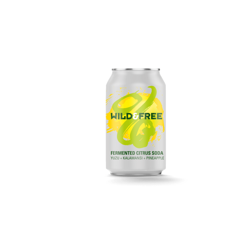 Wild Beer Co Fermented Citrus Soda (0.5% ABV)